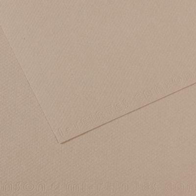 PAPER CANSON 50 X 65 CM  160G 122 GRIS FRANELA