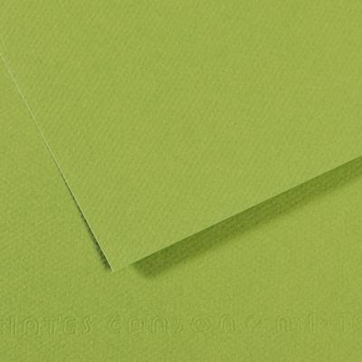 PAPER CANSON 50 X 65 CM 160G 475 VERD POMA