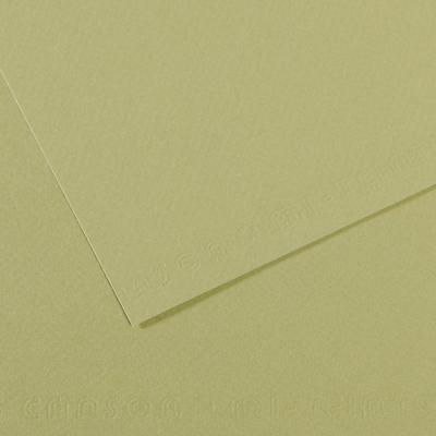 PAPER CANSON 50 X 65 CM 160G 480 VERD AMETLLA