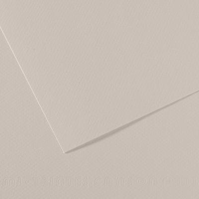 PAPER CANSON 50 X 65 CM  160G 120 GRIS PERLA