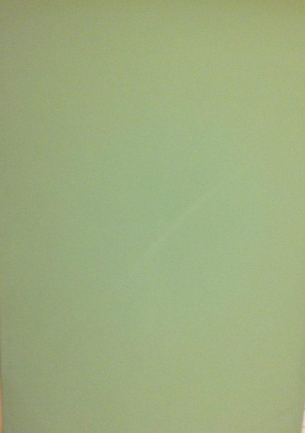 PAPER SHADOW VERD / GRIS 137CM