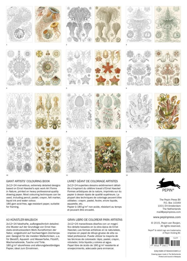LLIBRE ARTISTIC PINTAR ART FORMS NATURE 24 FULLS 180 GR