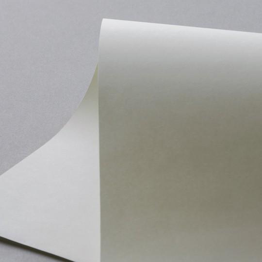PAPER OFFSET ELAIA 125 GR 65X90 CM