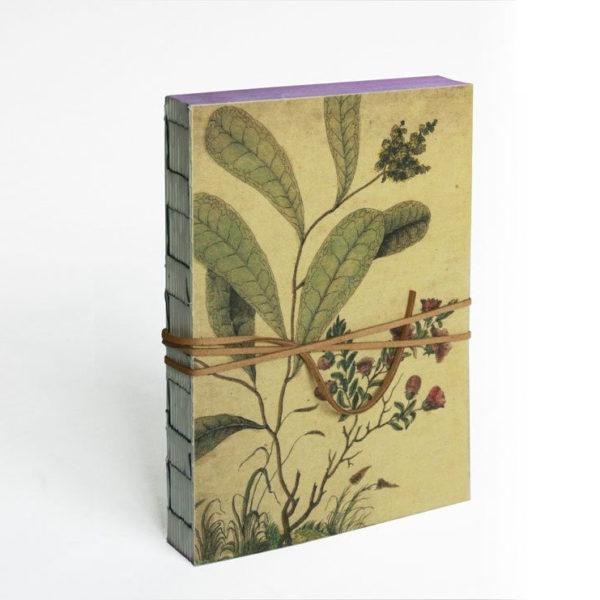 Llibre en blanc Botanical