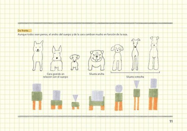 LLIBRE ANIMALES COMO DIBUJARLOS CAST (D)